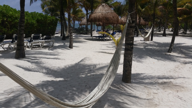 Viaje Riviera Maya Hotel Palladium