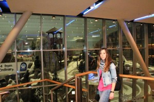 Pista de Ski en Dubai Mall of Emirates Judit