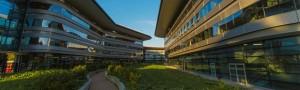 Turin Universidades
