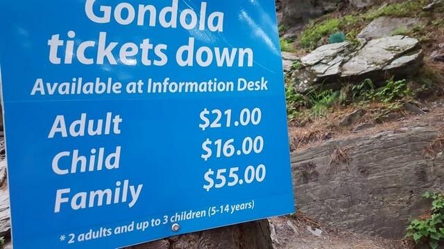 Skyline Queenstown Gondola precios