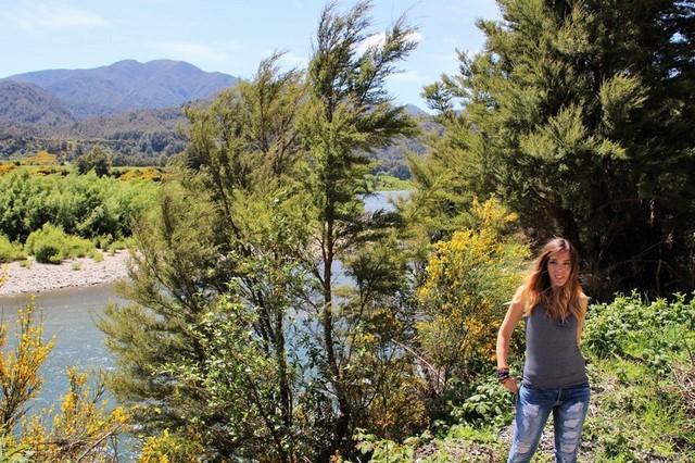 Luna de miel Nueva Zelanda: viajando en coche