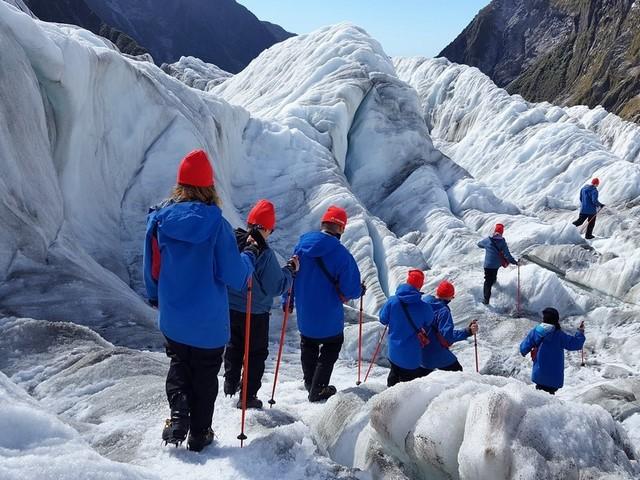 Que hace en Nueva Zelanda: Franz Josef glacier