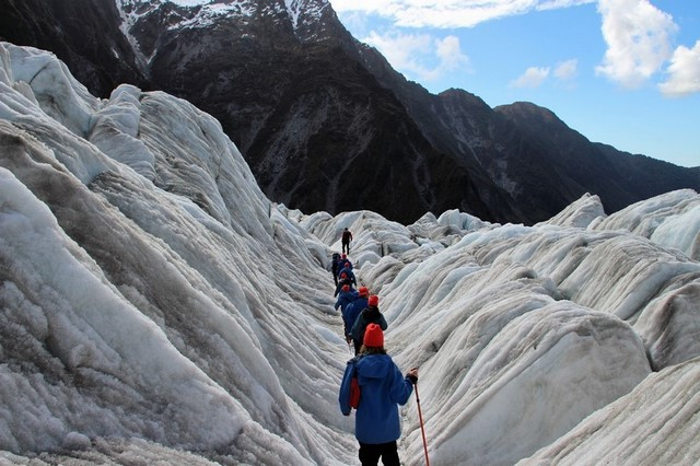 Que hacer en Nueva Zelanda: Franz Josef glacier excursión