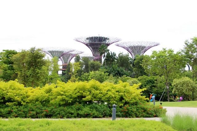 Que ver en Singapur Gardens by the bay