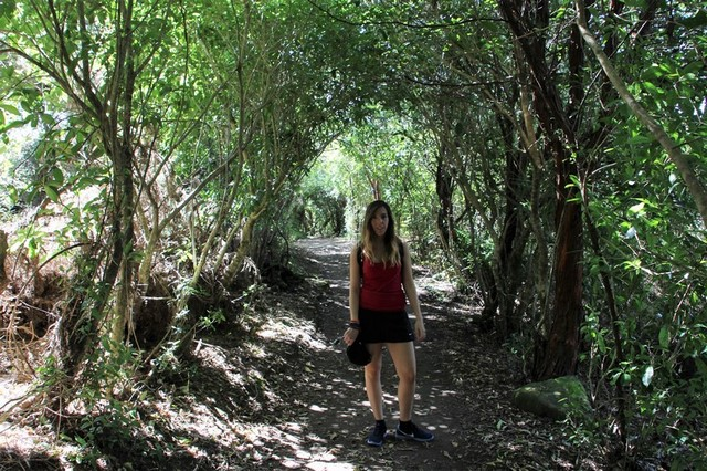 Viaje a Nueva Zelanda: Abel Tasman Great Walks 4