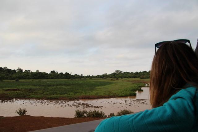 Abrebadero desde THE ARK Aberdare Kenia