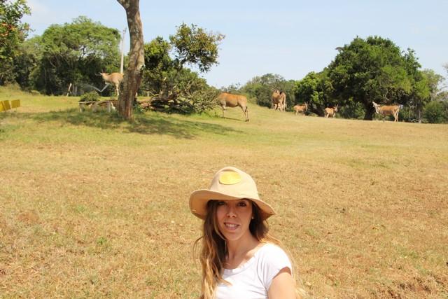 Safari Kenia: Aberdares Country Club