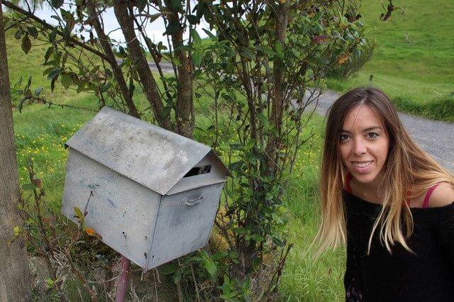 De Taupo a Rotorua Nueva Zelanda Buzon