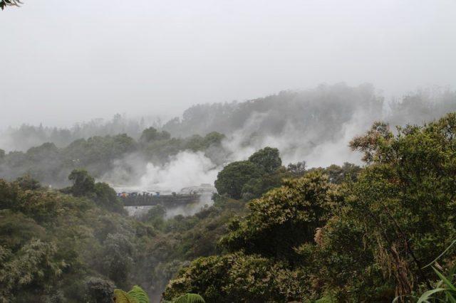 Te Puia Rotorua geisers