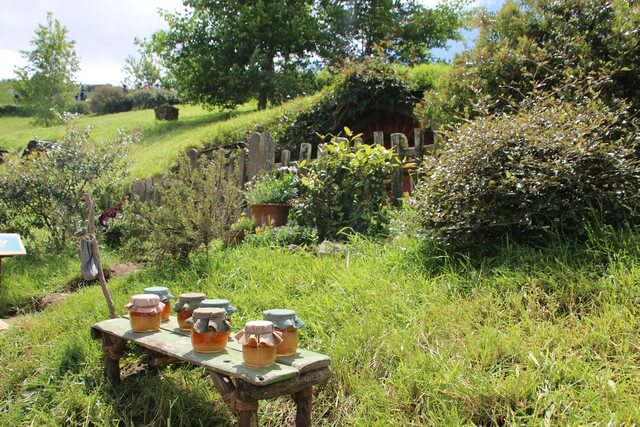 Viaje a Nueva Zelanda: Hobbiton detalles miel