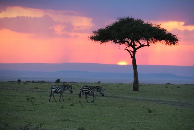 Masai Mara, nuestro último atardecer