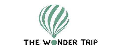 logo the wonder trip