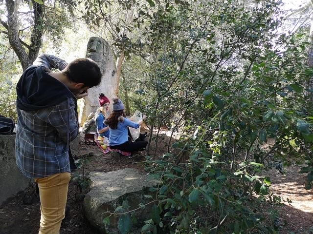 Fotos bosque encantado Orrius