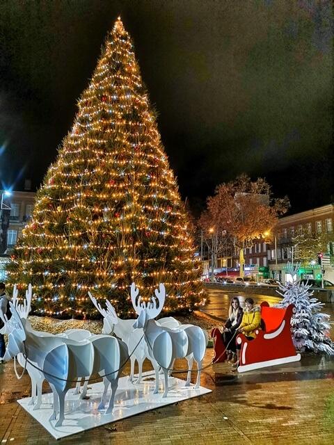 Arbol de Navidad Albi
