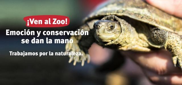 Barcelona con niños Zoo de barcelona