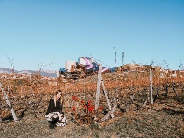 Elciego Rioja Alavesa