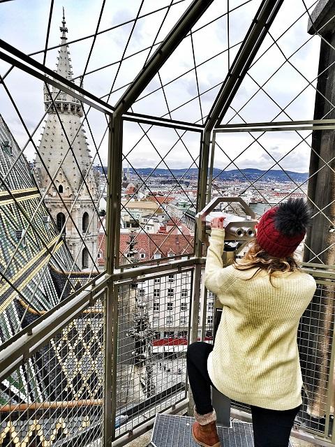 En la Torre norte de la catedral de Viena