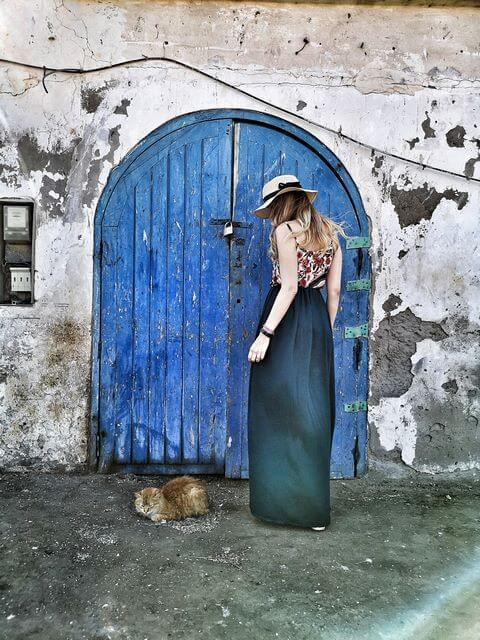 Gatos en Essaouira