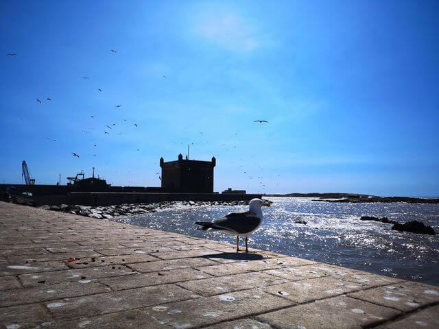 Essaouira, la joya del Atlántico