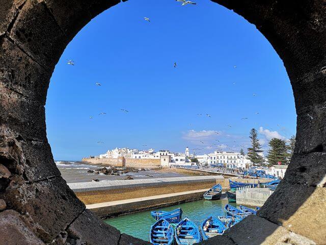 Skale du port essaouira marruecos (9)