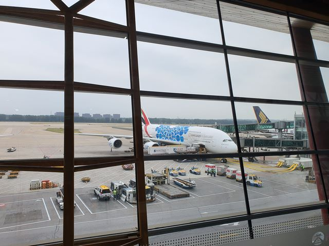 Viajar por libre a China vuelos