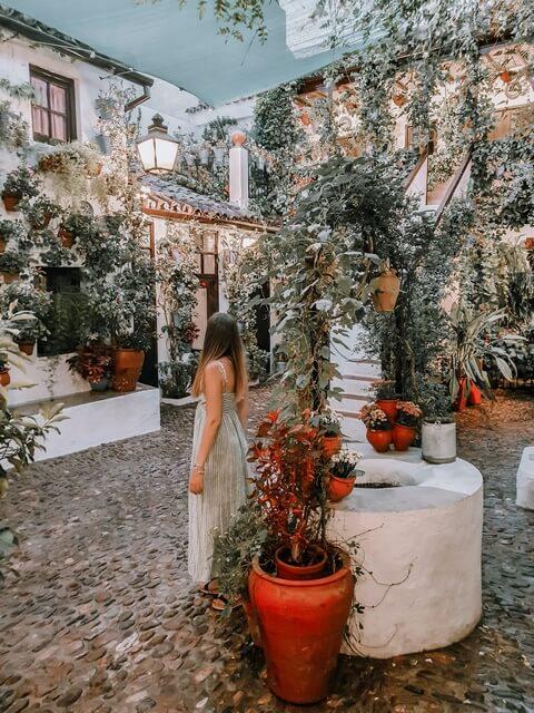 Patios Andaluces, num 44 calle san Basilio