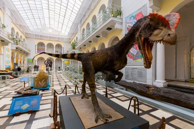 Museo Geologico Varsovia