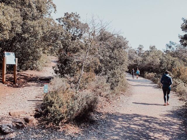 Camino Cova Simanya